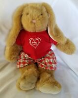 Build A Bear Bunny with Clothes and Shoes Lot