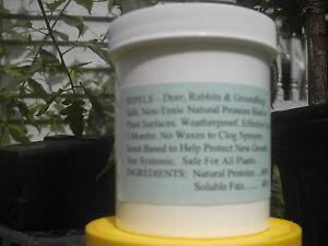 REPELS DEER & RABBIT Repellent  Makes 10 Gallons