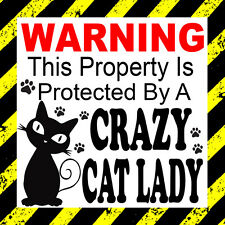 Warning This Property Is Protected by a Crazy Cat Lady Door Window Etc Sticker