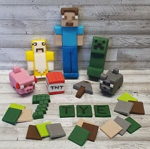 100% edible handmade unofficial Mine craft cake topper decorating set name age
