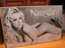 Nikki Cherie Night Hot girl ORIGINAL car garage Vintage Poster 1998  10735
