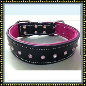 Black and Pink Leather Dog Collar with Pink Crystals