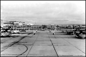 USN PBY Catalina NAS Jacksonville 1945 8x12 Aircraft Photos