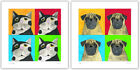 Smudger & Pip by Chris Davies~Set of 2 Dog & Cat Color Square Pop Art Prints