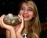 JUDITH LEIBER Gold SWAROVSKI Crystal RESTING CRANE BIRD MINAUDIERE & PILLBOX SET