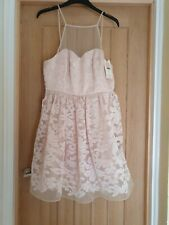Size 10 Pink Netted And Lined Dress Bnwt From LIPSY Ariana Collection