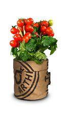 Baza Graines Bio Mini Tomate en Pratiques Recyclé Ragbeutel avec Bio-Erde
