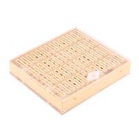 Scatola box allevamento ape regina api regine plastica strumento apicoltura