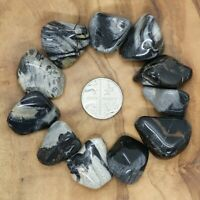 11 x Silver Leaf Jasper Tumblestones 65g+ Wholesale Therapists Healers