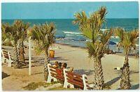 Beachfront Myrtle Beach SC Vintage Postcard South Carolina Chrome