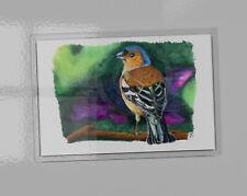 Chaffinch art picture magnet. Acrylic magnet contains print. 9.5cm x 6.5cm
