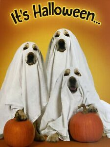Leanin' Tree Halloween Card - It's Halloween time to get scared sheetless! Dogs