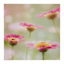 """IKEA Bild Art Poster Print""""Pink Haze""""Floral Green Yellow Daisy Flower 19.75""""NEW"""