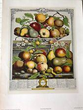 Robert Furber Twelve Months of Fruits: March Etching Print, 1970, Penn Prints