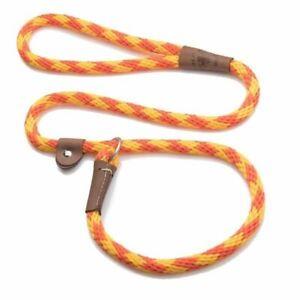 6 Foot Rope Slip Lead - 3/8 inch width - Range of Colours