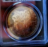 Morgan Silver Dolla 1884 P PCGS MS 64+++++ Monster Rainbow With Mirrors Glassy