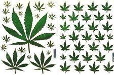 MARIJUANA, WEED, CANNABIS, GANJA STICKERS, 2 sheets, mixed * Metallic Green*