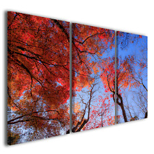 Quadri moderni Alberi rossi piante fiori natura stampa tela canvas ® quality