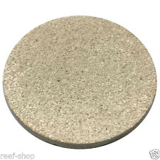 Coral Frag Disc XL 3 Inch Circle 1 Piece FAST FREE USA SHIPPING