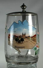 BREZNICE CZECH REPUBLIC GERMANY HAND PAINTED ENAMEL GLASS    LIDDED BEER STEIN