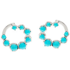 Sleeping Beauty Turquoise Sterling Silver Front Back Hoop Earrings QVC $195