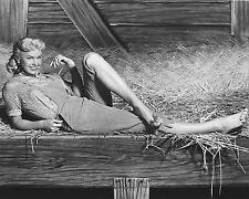 "Doris Day 10"" x 8"" Photograph no 7"