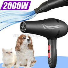 More details for 2000w high power pet hair dryer quick health care blowing dog cat grooming a