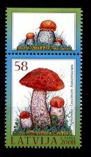 Pilze. Espenrotkappe. 1W. Rand(5). Lettland 2008