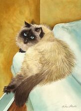 """Azoi"" Mini Print Sealpoint Himalayan Cat Art Print Drew Strouble Catmandrew"
