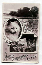 Vintage REAL PHOTO postcard 1908 White Persian Cat/Kittens Rotograph MERRY XMAS