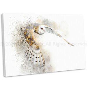 Barn Owl In Flight Watercolour Style Canvas Print British Bird Wall Art Picture