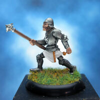 Painted RAFM Miniatures Male Paladin