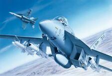Italeri 1/72 F/A-18 E Super Hornet # 083