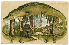 Alligator Border Florida Daytona 625 Ruins of Old Sugar Mill
