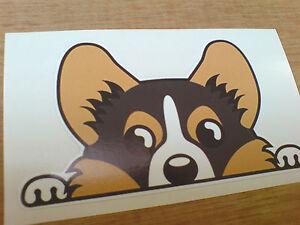 DOG PEEPER Car Van Bumper Sticker Decal 1 off 95mm