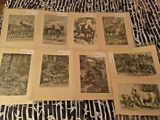 1 of 9-Friedrich Specht Mammal Prints 1885 From Animate Creation 45 total avail!