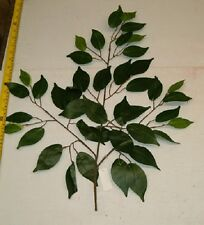 36 NEW GREEN FICUS  LEAF BRANCHES W/42 LEAFS, WHOLESALE SILK FLOWERS