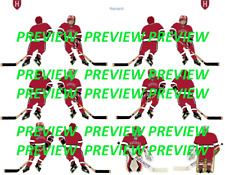 Coleco Table Hockey College Harvard Red Team Custom Decal Sheet