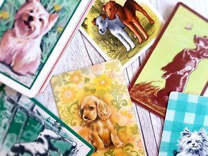 BARGAIN BUY, Swap Cards, Bulk Lot of 40, Dogs Theme