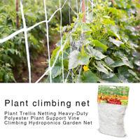 Climbing Plant Support Mesh Plastic Garden Net Clematis Trellis Brown 1.67*10M+
