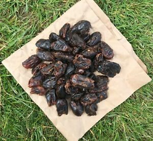 Dried Pitted Dates 250g,500g,1kg,2kg UK Stock Great for Baking and Snacking