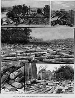 LOGGING, GRAND RAPIDS MICHIGAN LOG JAM, BRIDGES ANTIQUE