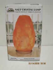 Natural Hand Carved Himalayan Salt Lamp Home Bedroom Office Air Purifier Light