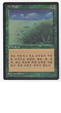MTG KOREAN BLACK BORDERED LIFELACE FBB (PLAYED) MAGIC THE GATHERING GREEN RARE