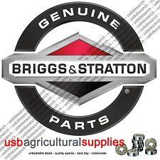 BRIGGS & Stratton Filtro Aria BS394018S ORIGINALE il giorno successivo V-Twin Vanguard 394018