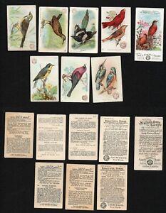 Cigarette Trade Cards : 8 Church & Dwight Birds