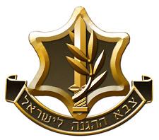 Bulk Lot 20 kg/44 lbs Idf Zahal Israel Israeli Army Military Books Booklets War