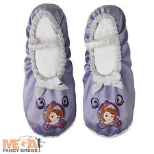 Princess Fancy Dress Shoes