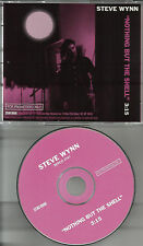 Dream Syndicate STEVE WYNN Nothing But the Shell RARE PROMO Radio DJ CD single