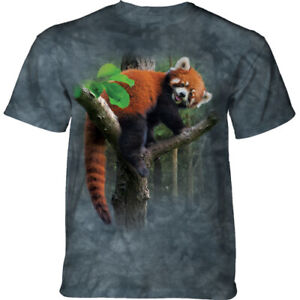 Red Panda Adult Extra Large Shirt